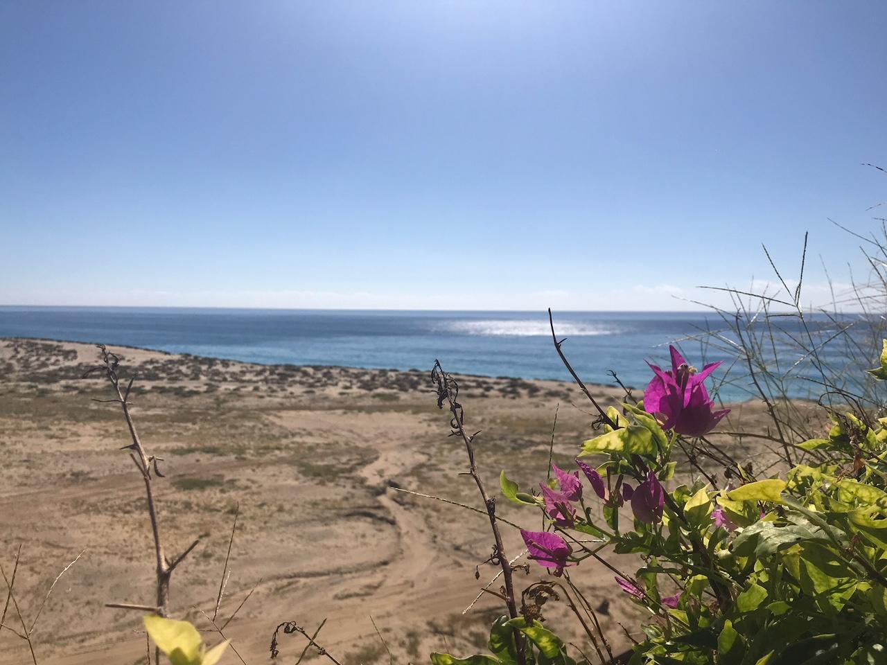 Cabo San Lucas - The Style Hostess